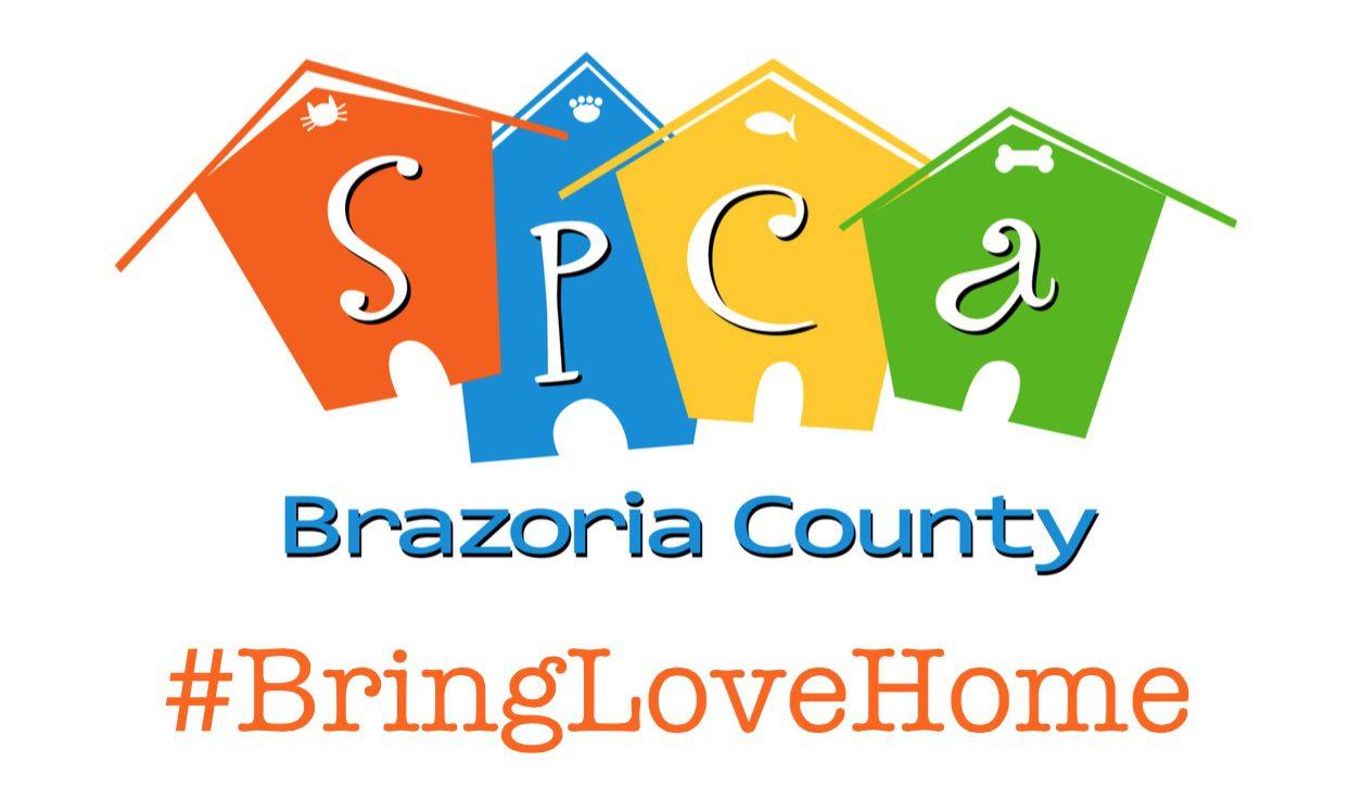 Build Love A Home